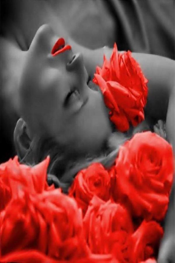 Homenaje rosas rojas a Sylvia Kristel