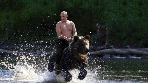 Putin cabalga en un oso