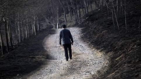 El paseo por el bosque quemado