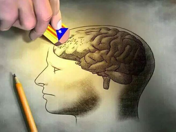 independen tismo borra cerebro