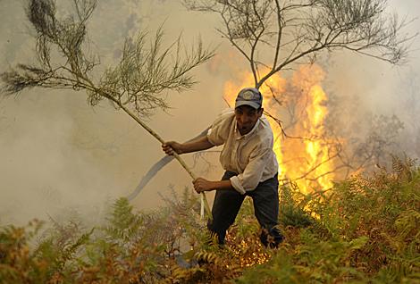 Demasiados incendios