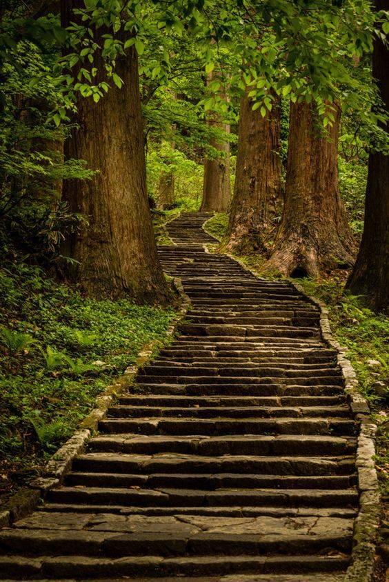 solo-hay-dos-errores-que-podemos-cometer-en-el-camino-de-la-verdad-no-iniciarlo-y-no-recorrerlo-hasta-el-final